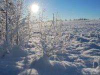 Talvine päike
